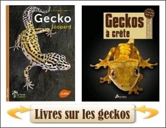 livres sur les geckos