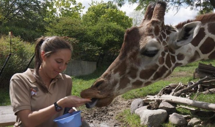 carrière écologie animale