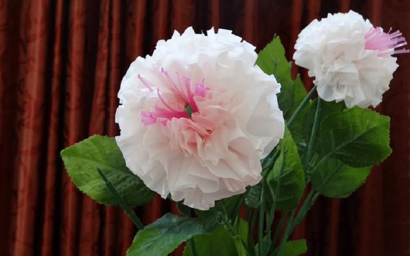 fleur en sac plastique
